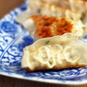 japanese gyoza cooking lesson